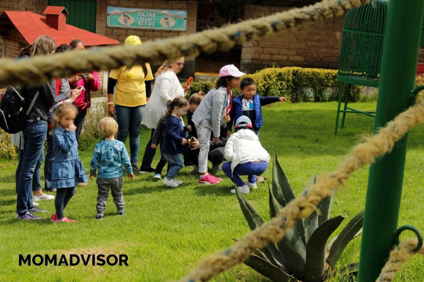 granja_del_tio_pepe_fiestas_tematicas_animales_cdmx_cumpleaños_niños1