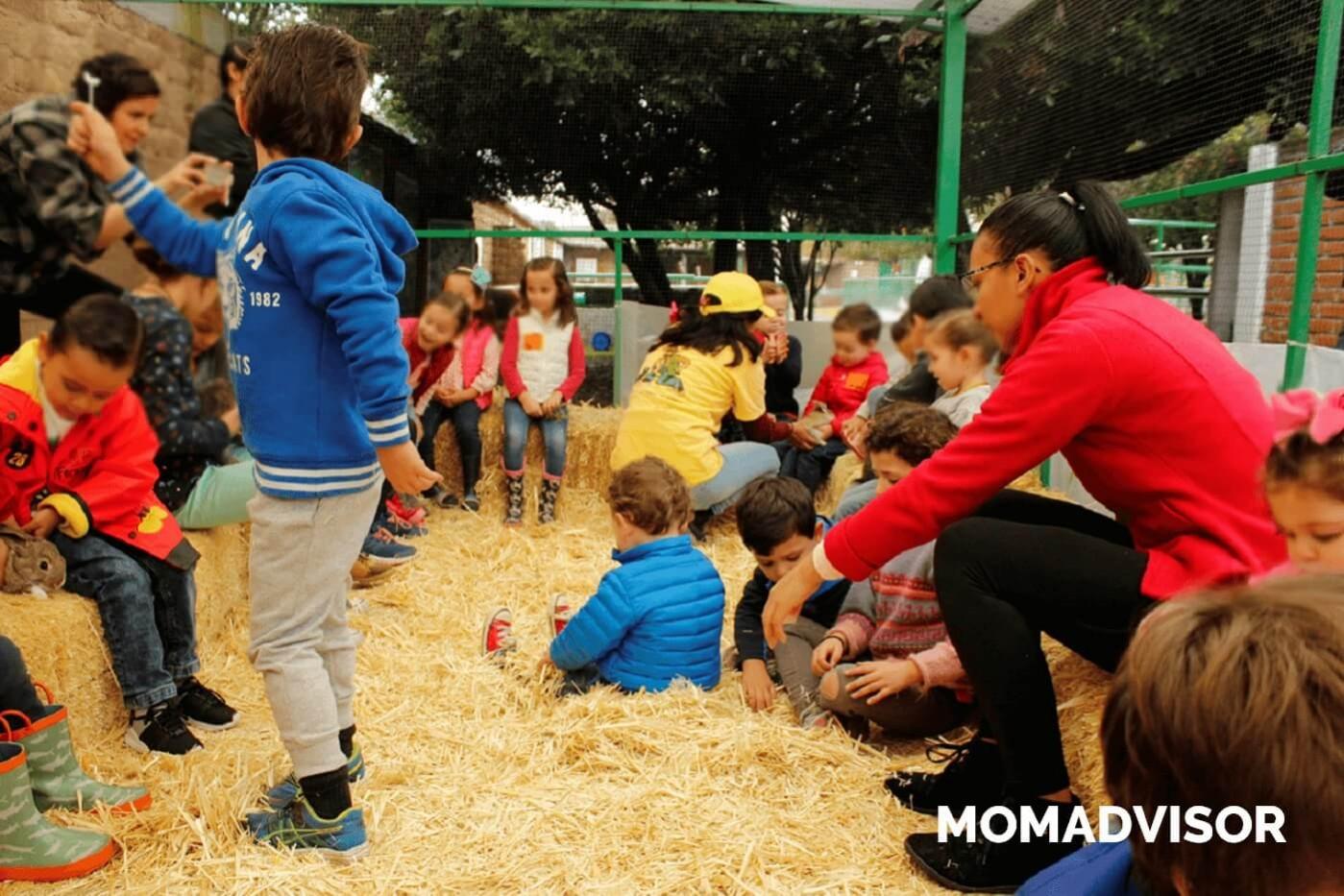granja_del_tio_pepe_fiestas_tematicas_animales_cdmx_cumpleaños_niños_conejos-1