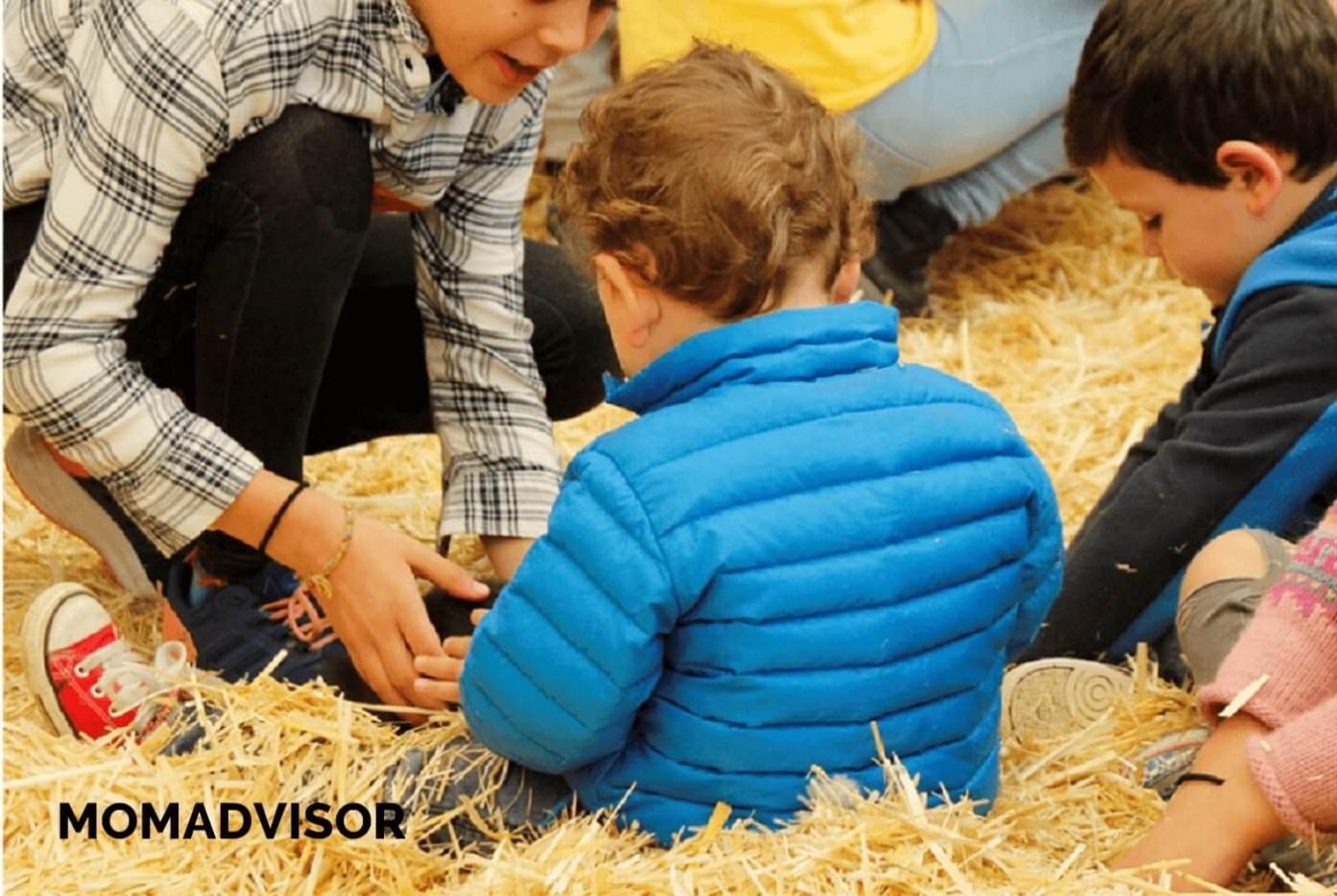 granja_del_tio_pepe_fiestas_tematicas_animales_cdmx_cumpleaños_niños_conejos_bebe-1