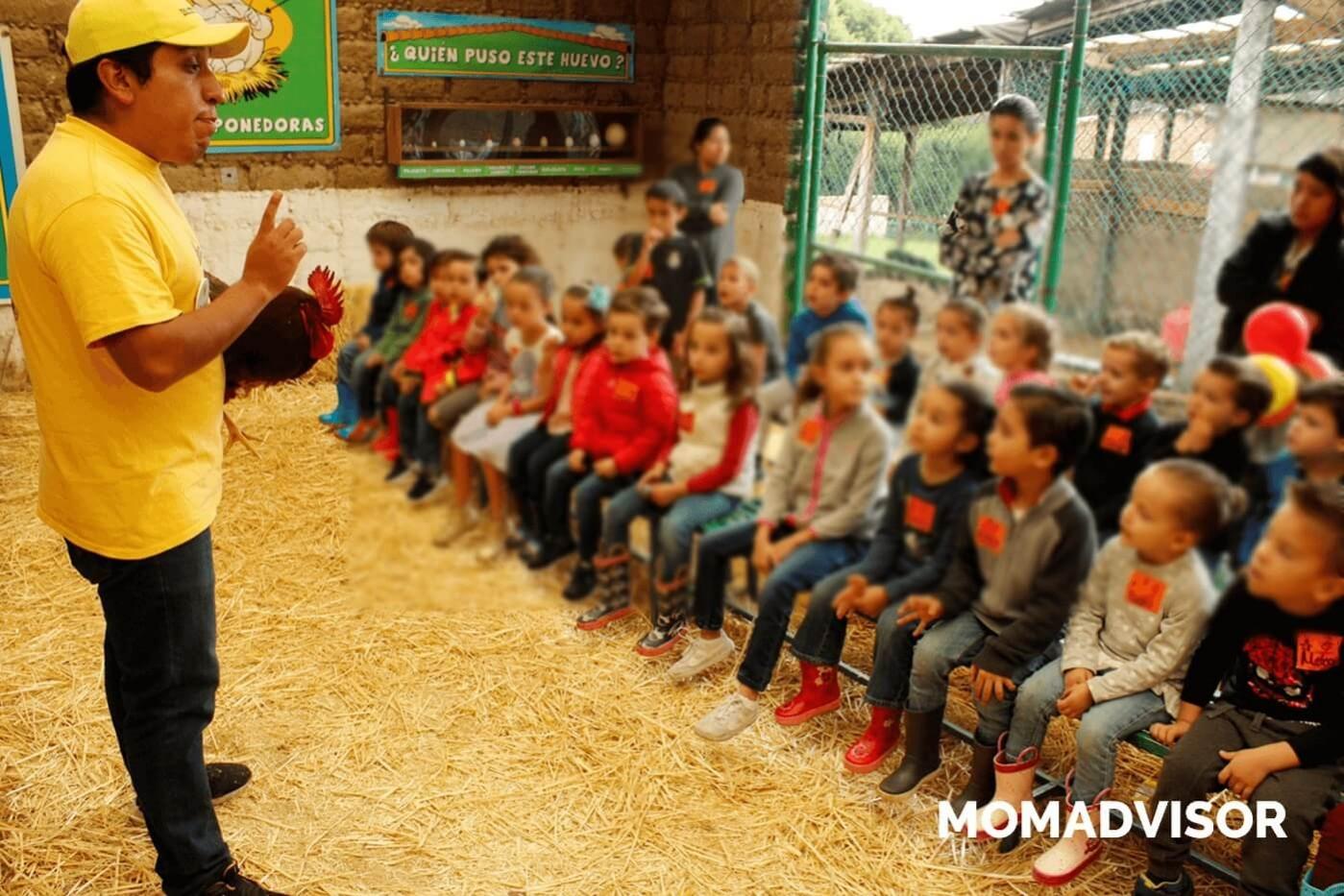 granja_del_tio_pepe_fiestas_tematicas_animales_cdmx_cumpleaños_niños_gallinas-1