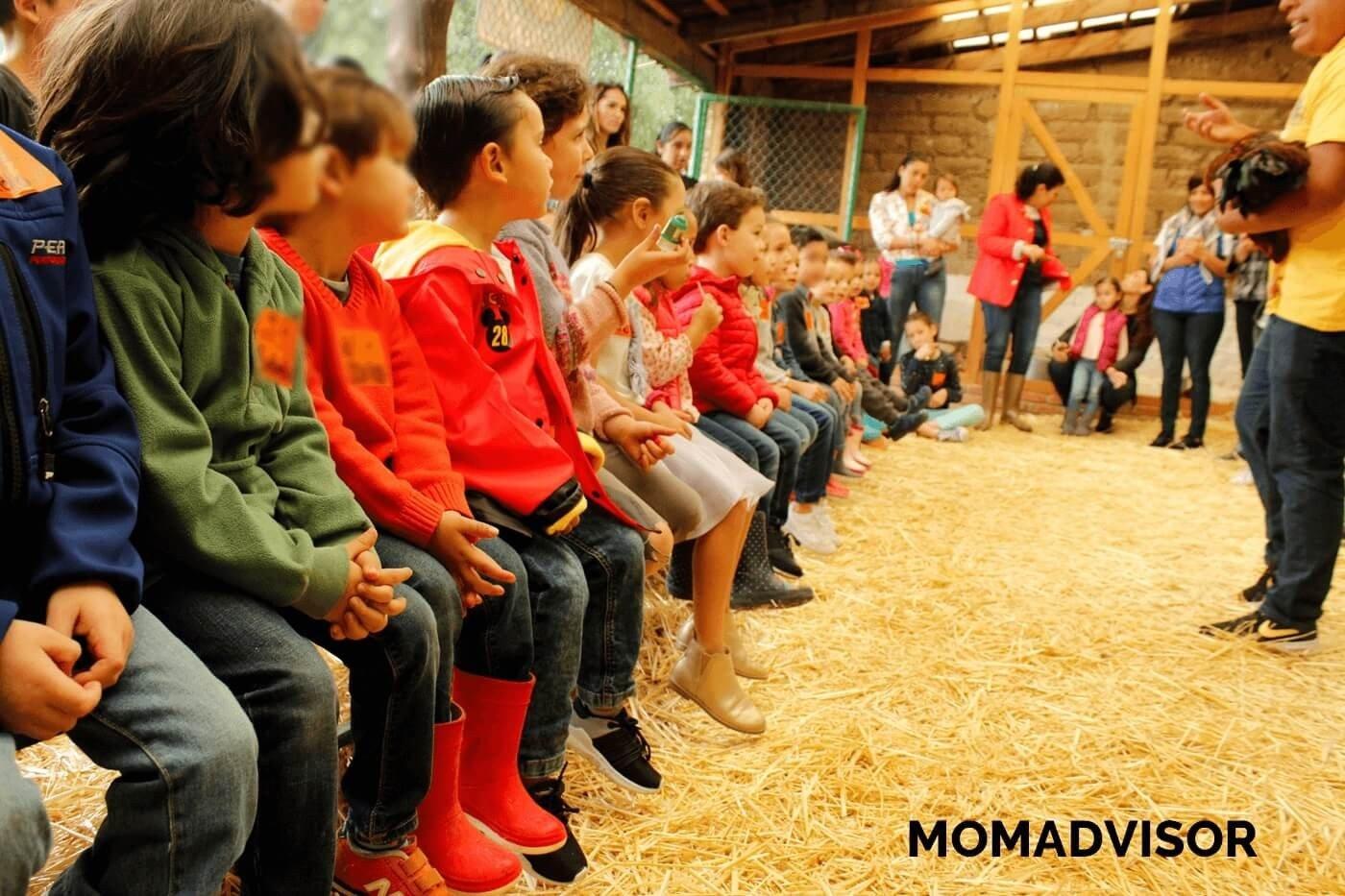 granja_del_tio_pepe_fiestas_tematicas_animales_cdmx_cumpleaños_niños_gallo_gallina_pollitos