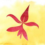 colegio-flor-de-lys-escuela-waldorf-cdmx-df-logo