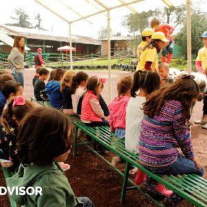 granja_del_tio_pepe_fiestas_tematicas_animales_cdmx_cumpleaños_niños_caballos